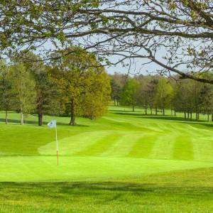 Tudor Park Golf 3